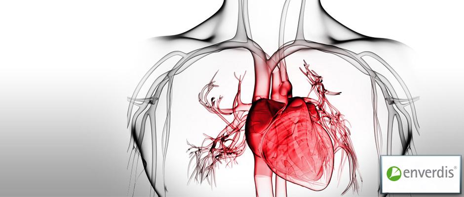 Enverdis | Medical Solutions