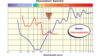 AbsorptionSpectra